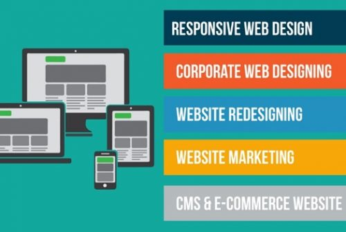 Developing Your Website: Basic Key Points That You Should Know