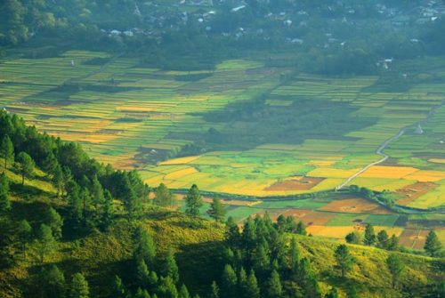 8 Beautiful Places You Not Shouldn't Be Visited in Lake Toba